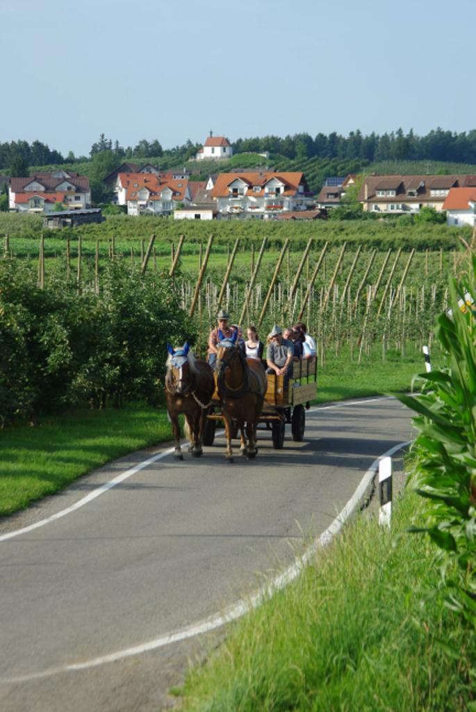 Pferdekutschfahrt Wasserburg