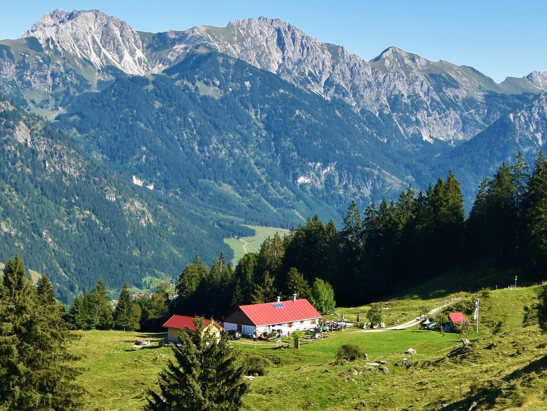 Horn Alp 3.jpg
